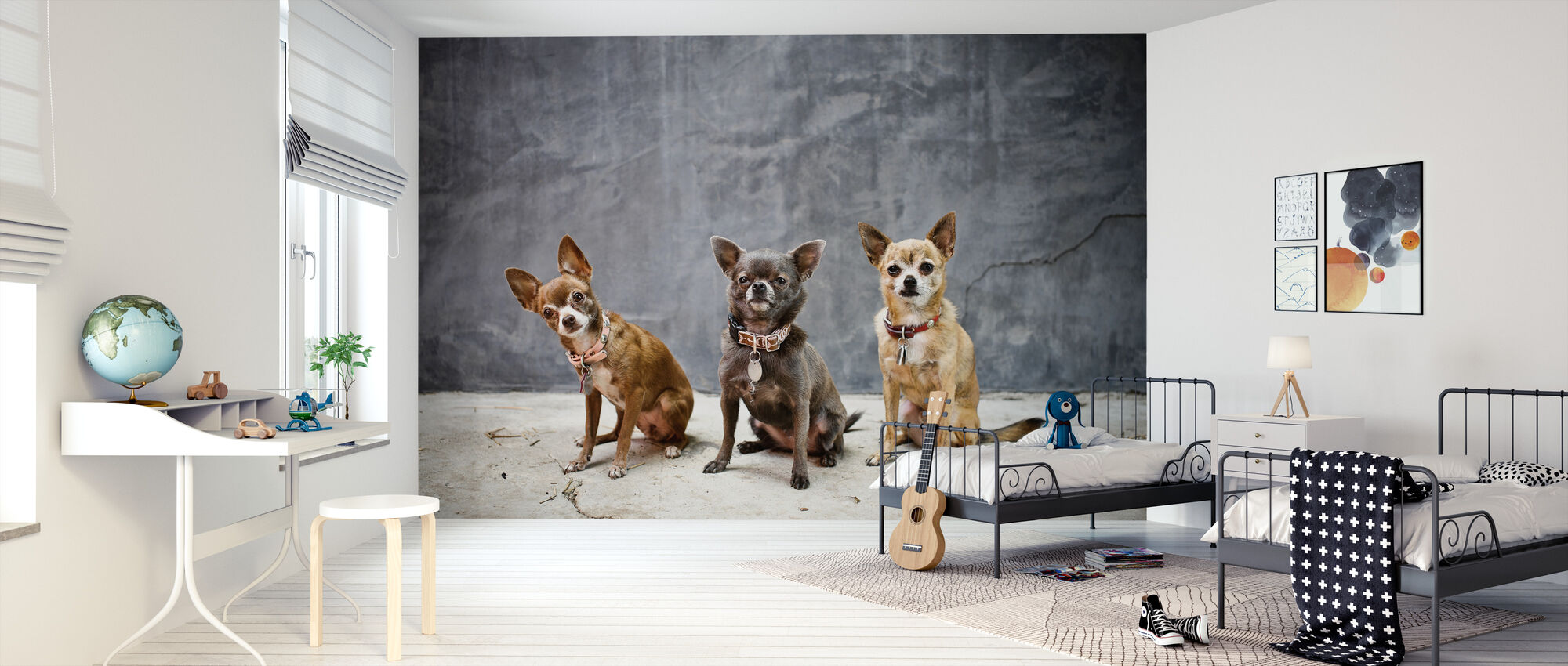 Chihuahua Trio - Wallpaper - Kids Room