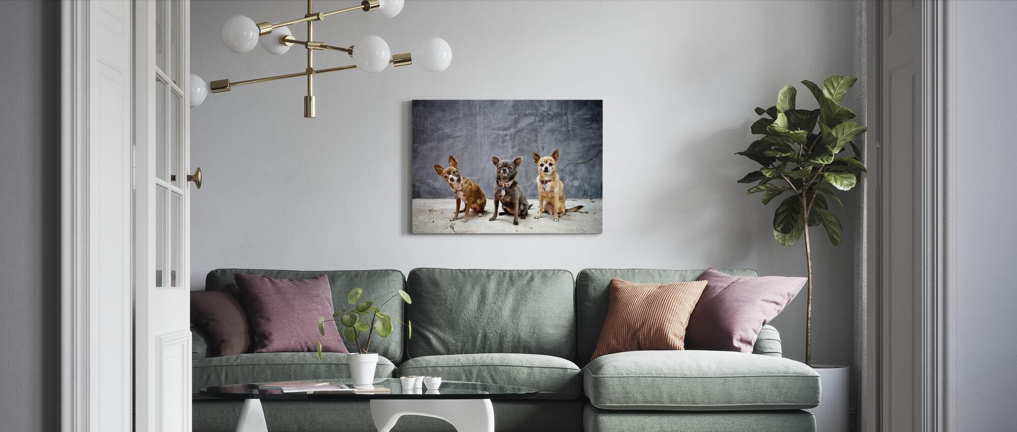Chihuahua Trio - Canvas print - Living Room