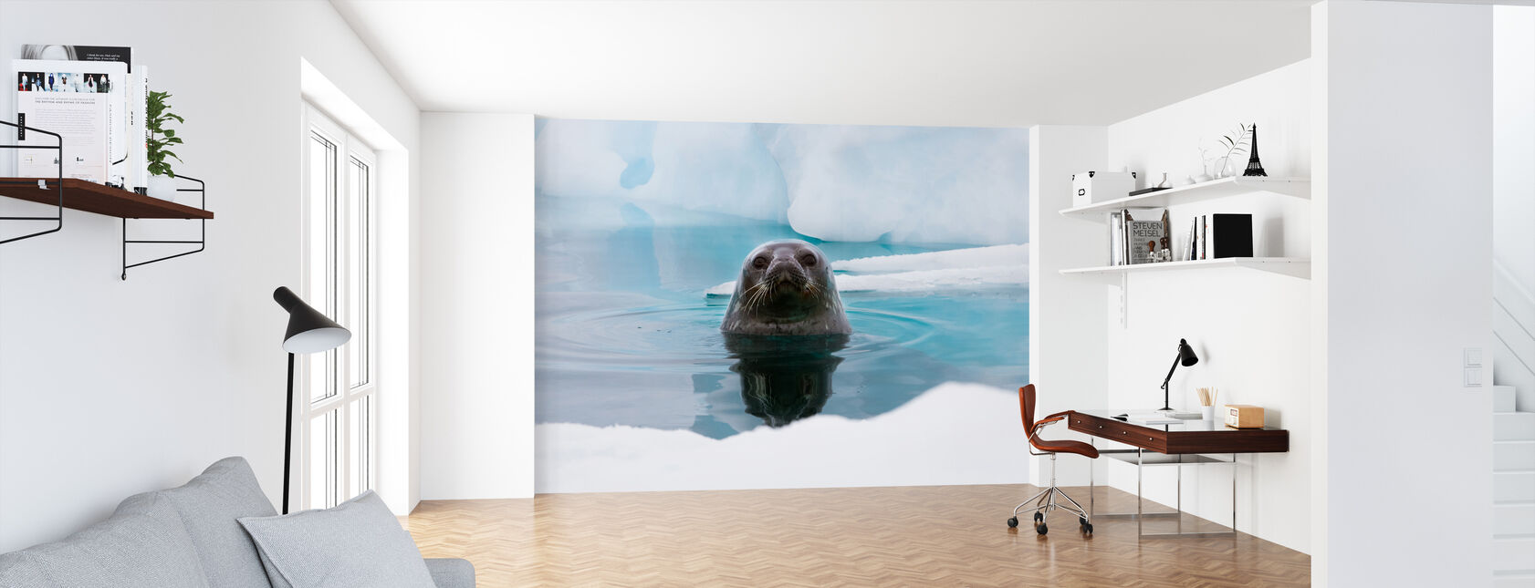 Curious Seal - Wallpaper - Office