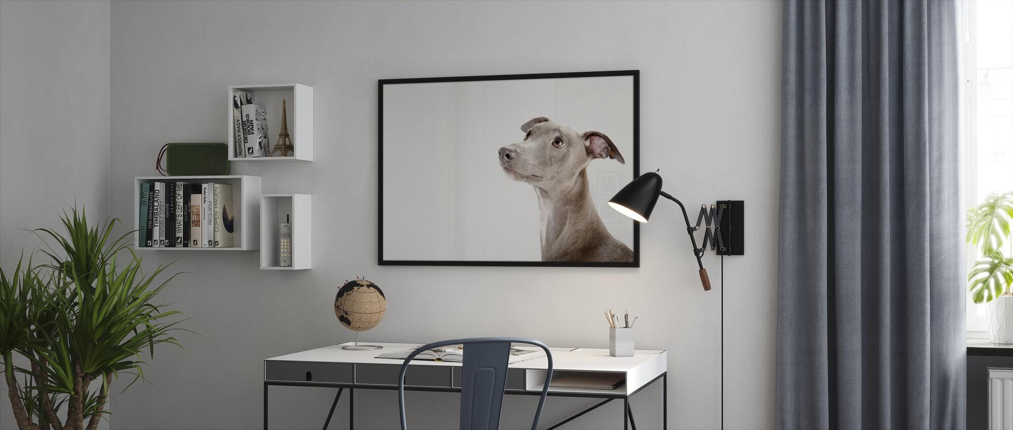 Whippet - Framed print - Office