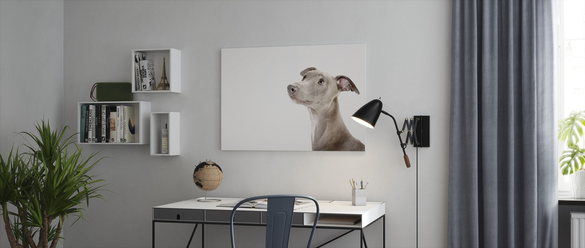 Whippet - Canvas print - Office
