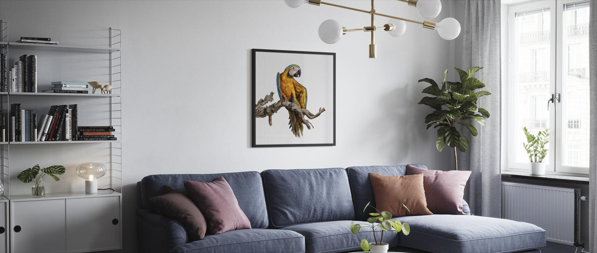 Dans papegøye - Innrammet bilde - Stue
