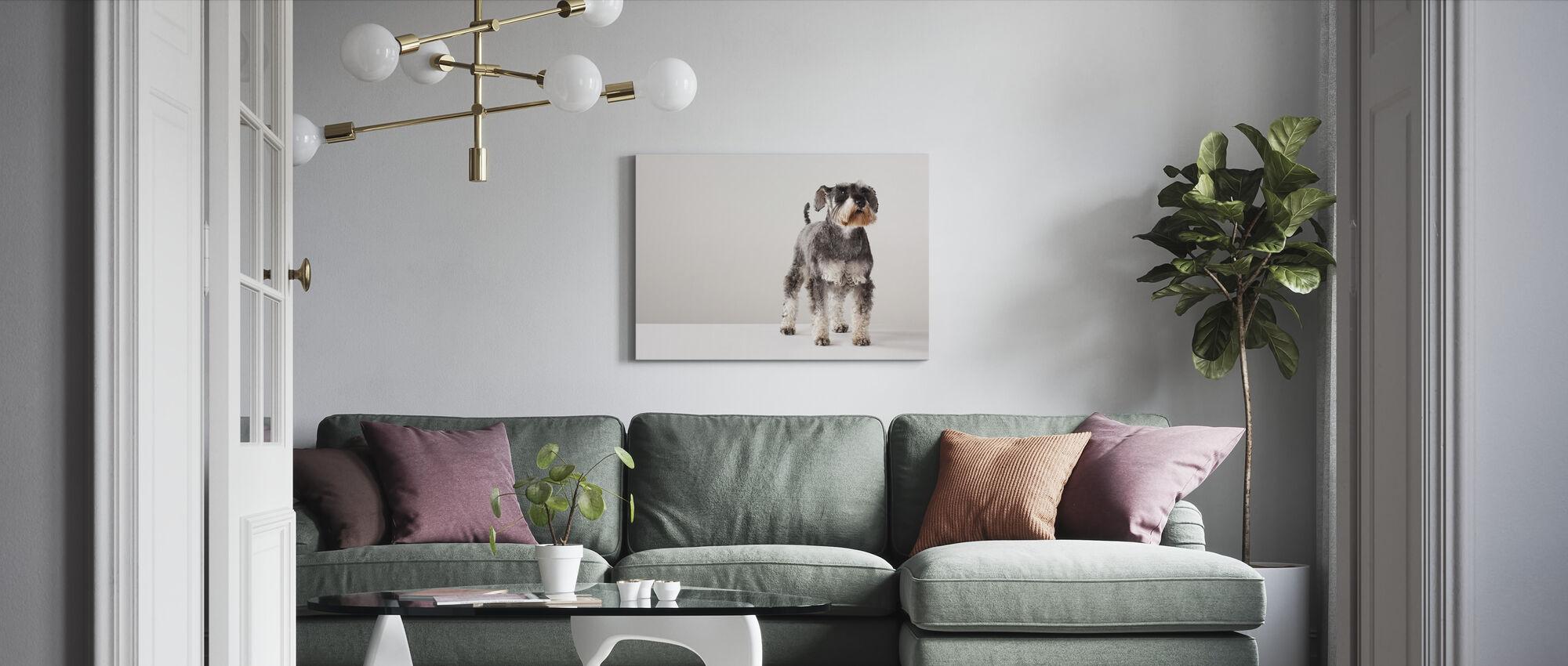 Schnauzer - Canvas print - Living Room