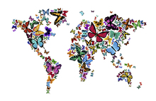 Fototapet - Large Butterflies World Map