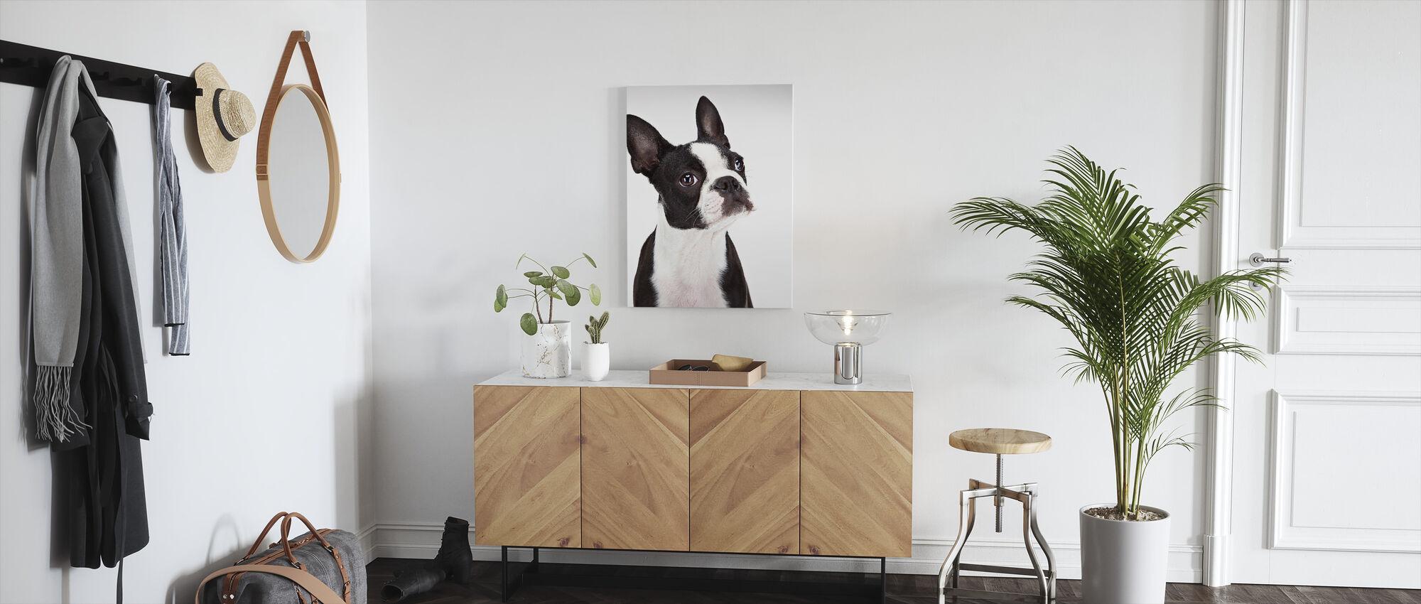 Boston Terrier - Canvas print - Hallway