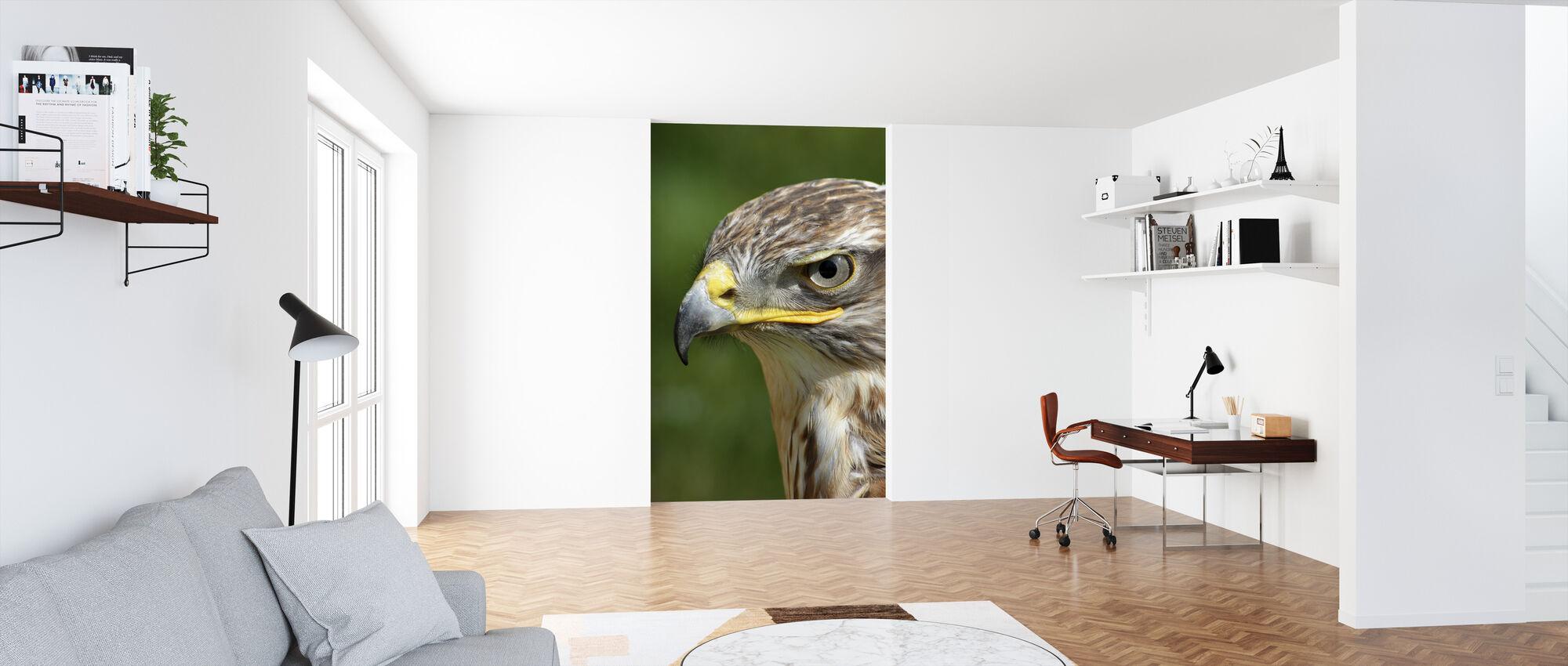 Raptor - Wallpaper - Office