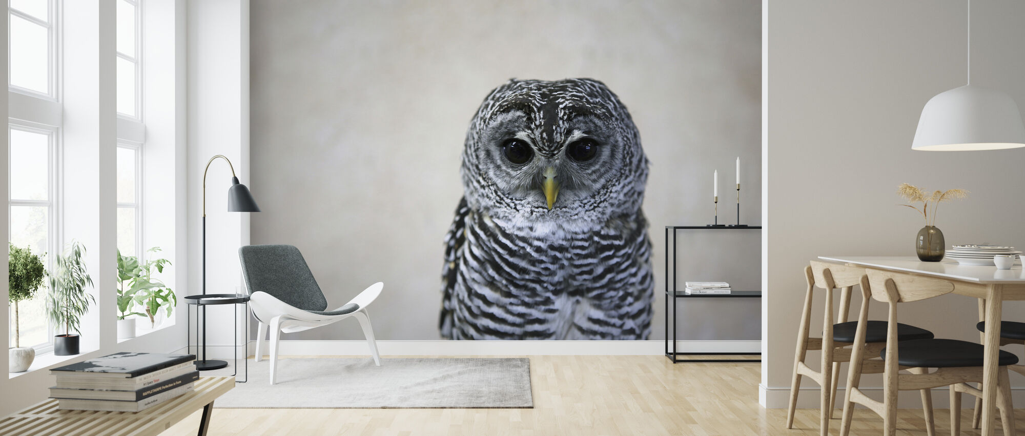Portrait of an Owl - Wallpaper - Living Room