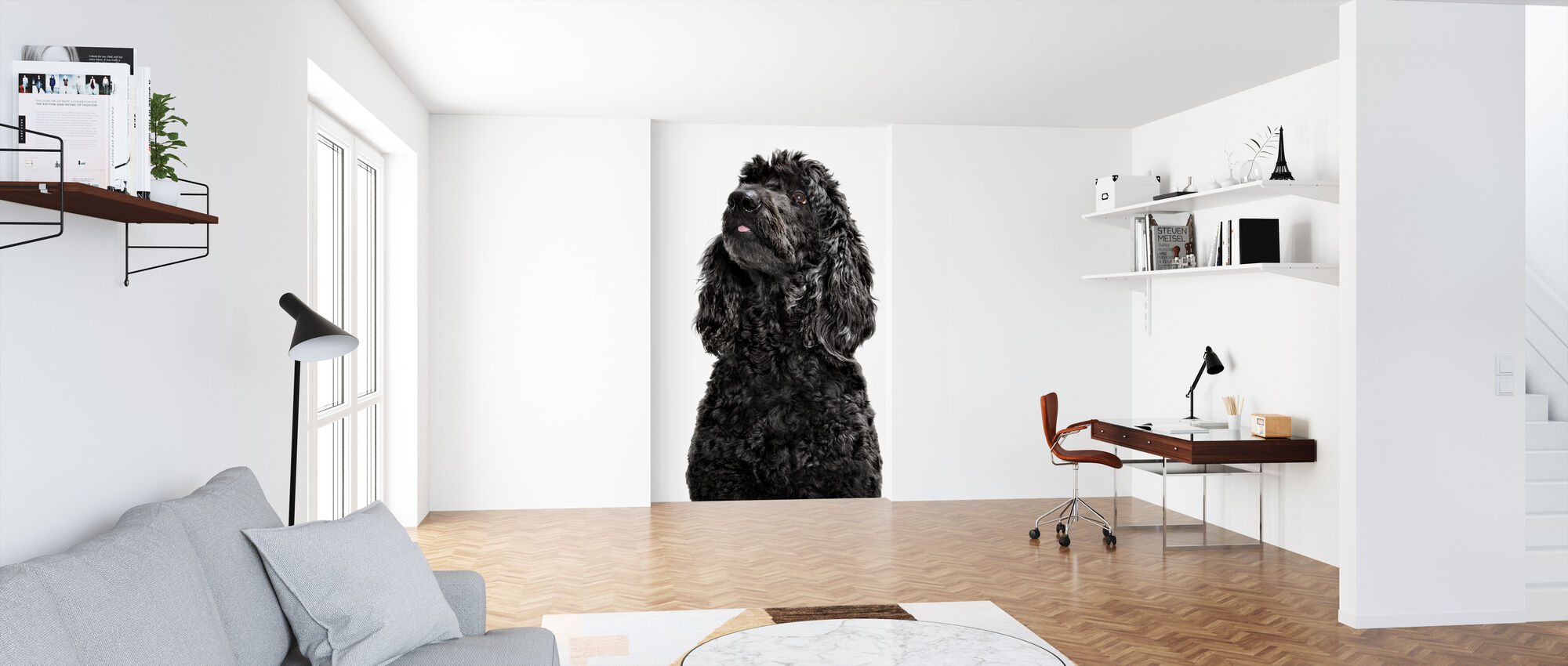Labradoodle - Wallpaper - Office
