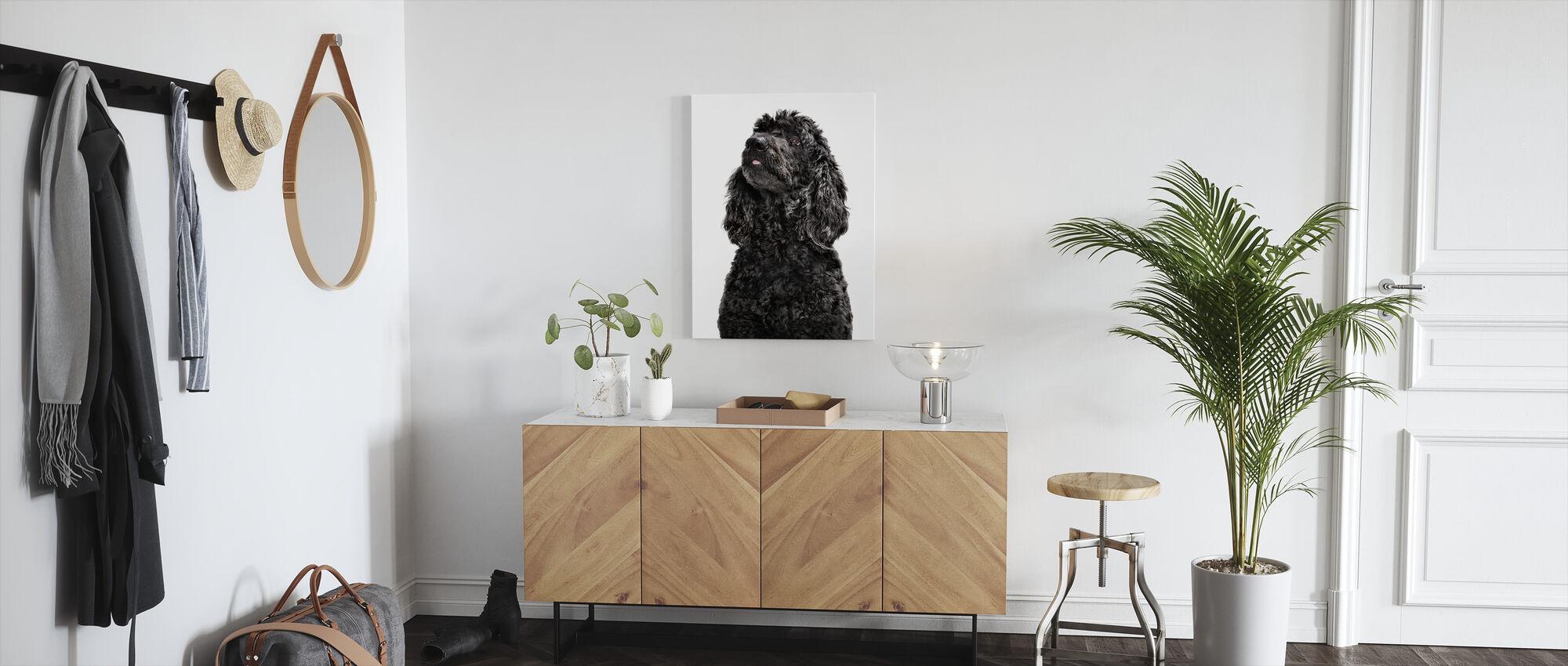 Labradoodle - Canvas print - Hallway