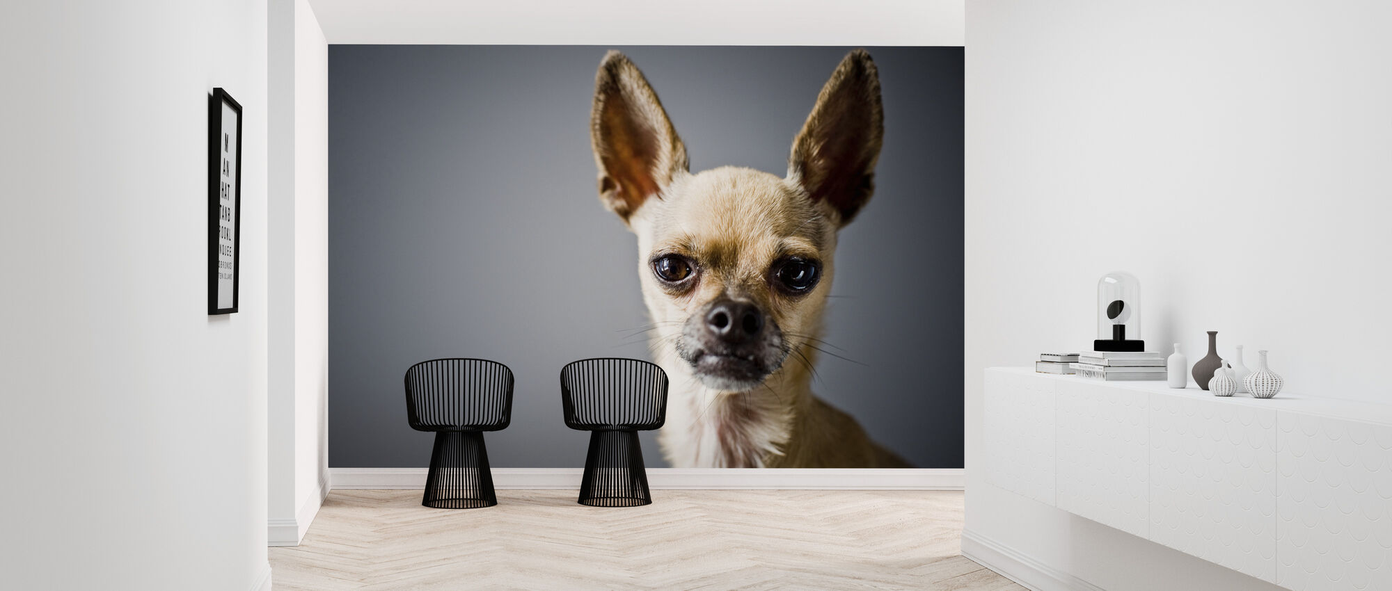 Chihuahua Imitating Lama - Wallpaper - Hallway