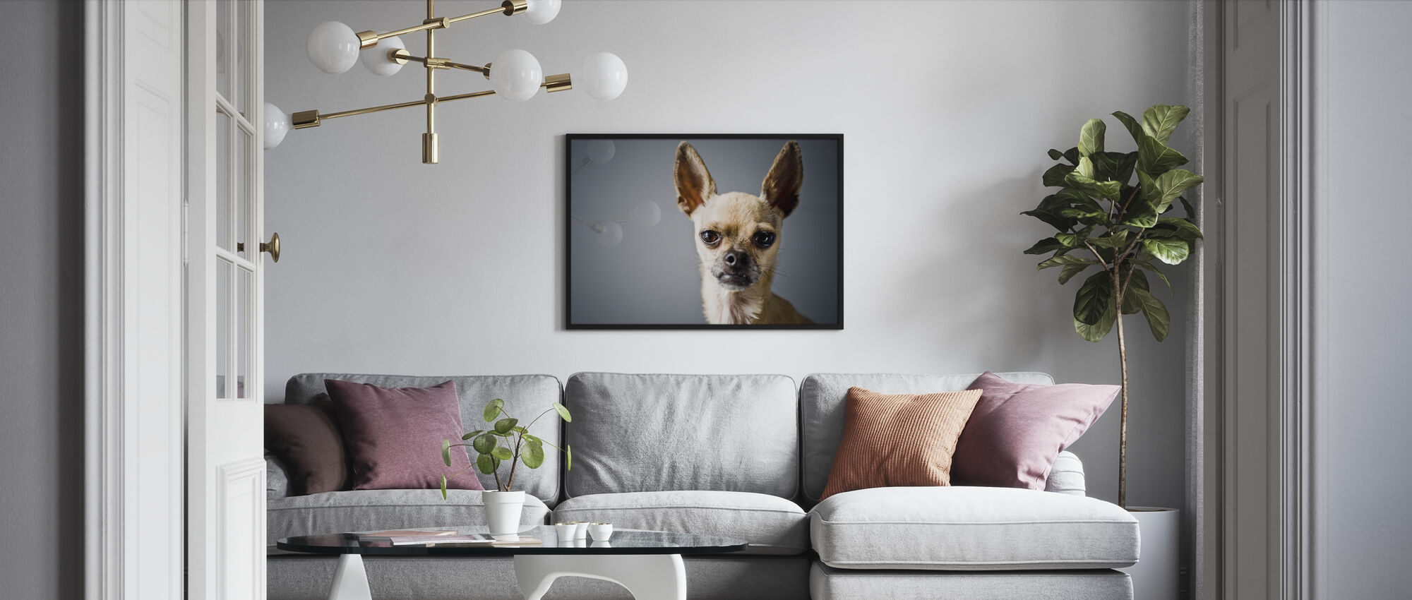 Chihuahua Imitating Lama - Framed print - Living Room