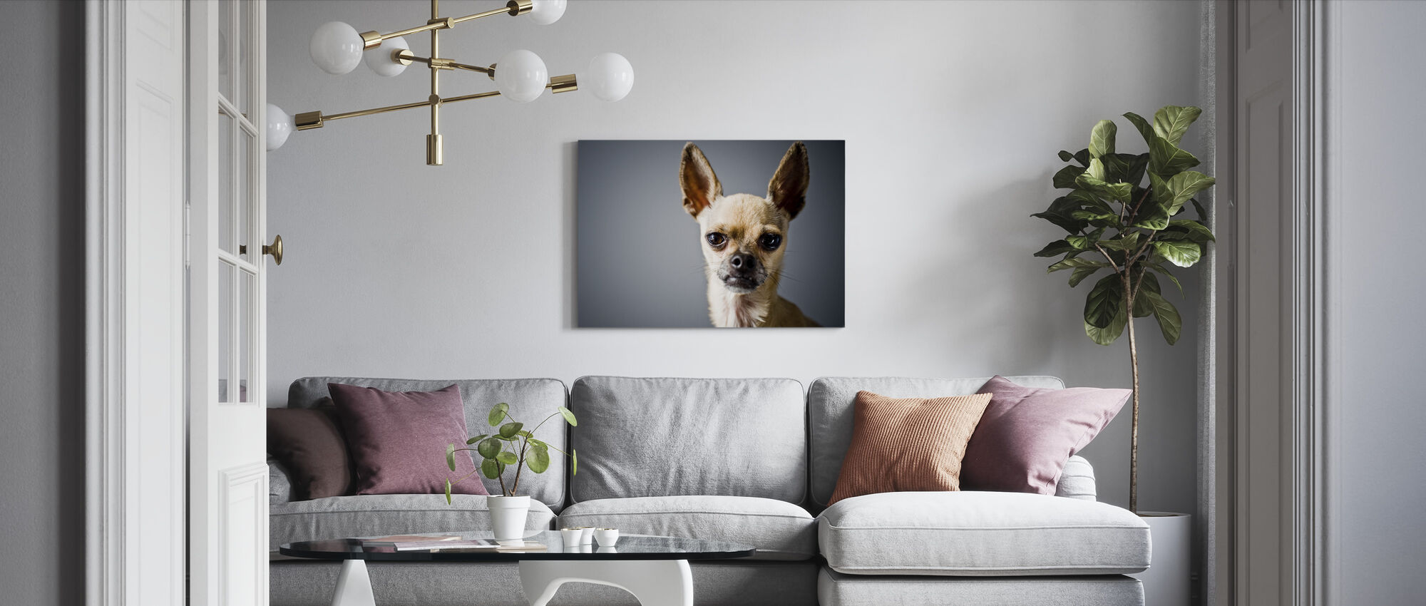 Chihuahua Imitating Lama - Canvas print - Living Room
