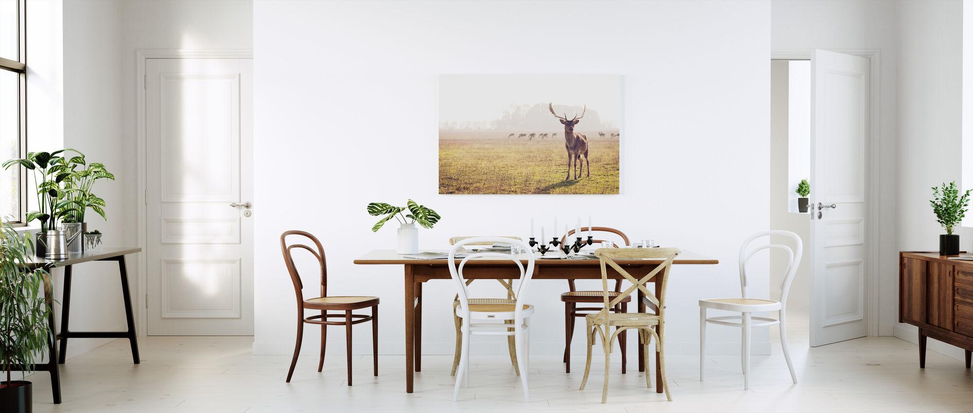 Fallow Deer - Canvas print - Kitchen