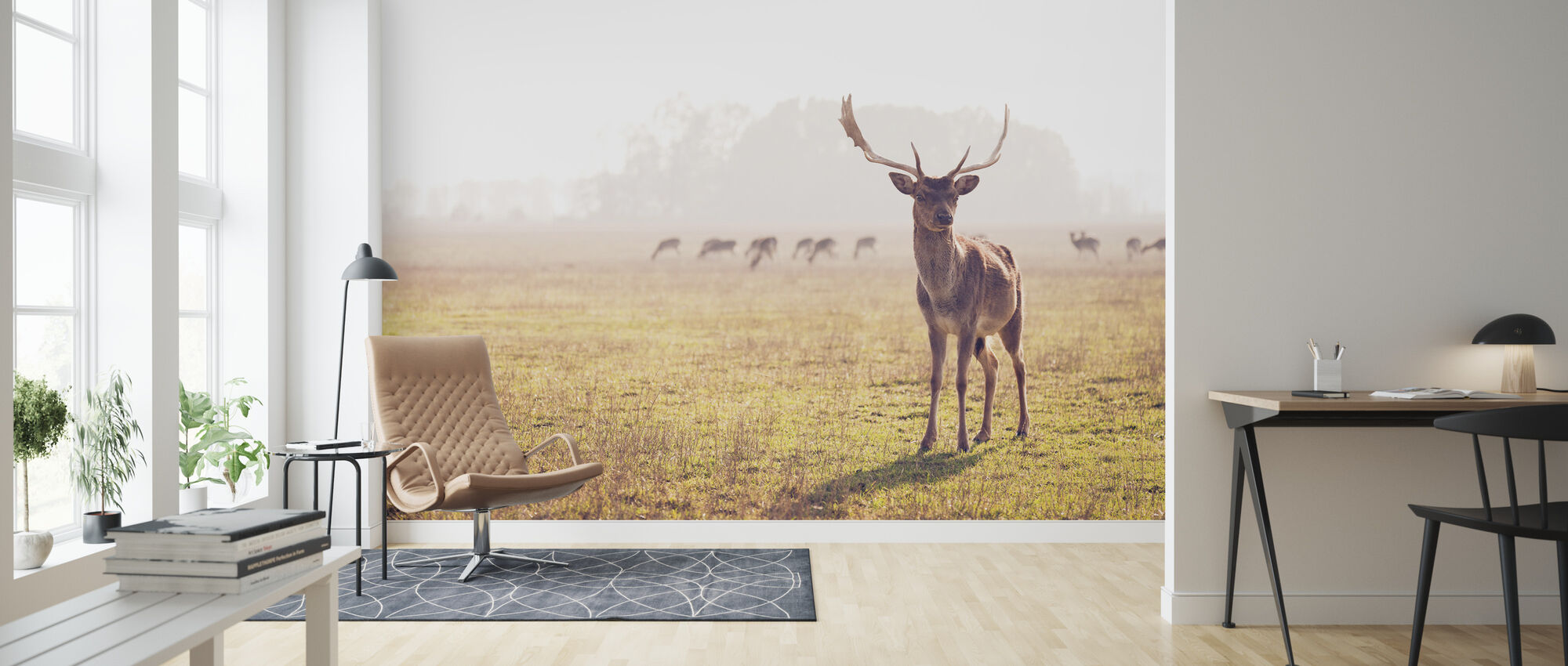 Fallow Deer - Wallpaper - Living Room