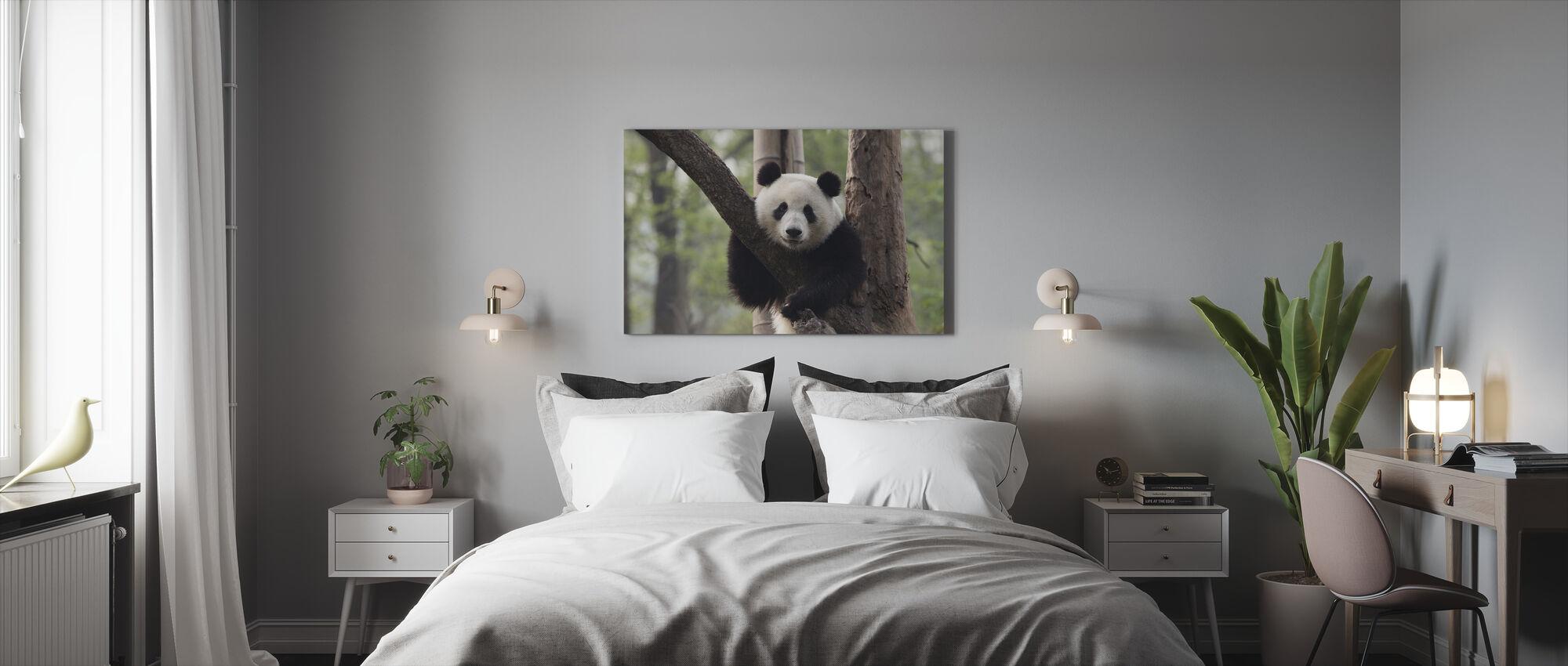 Zoete Panda - Canvas print - Slaapkamer