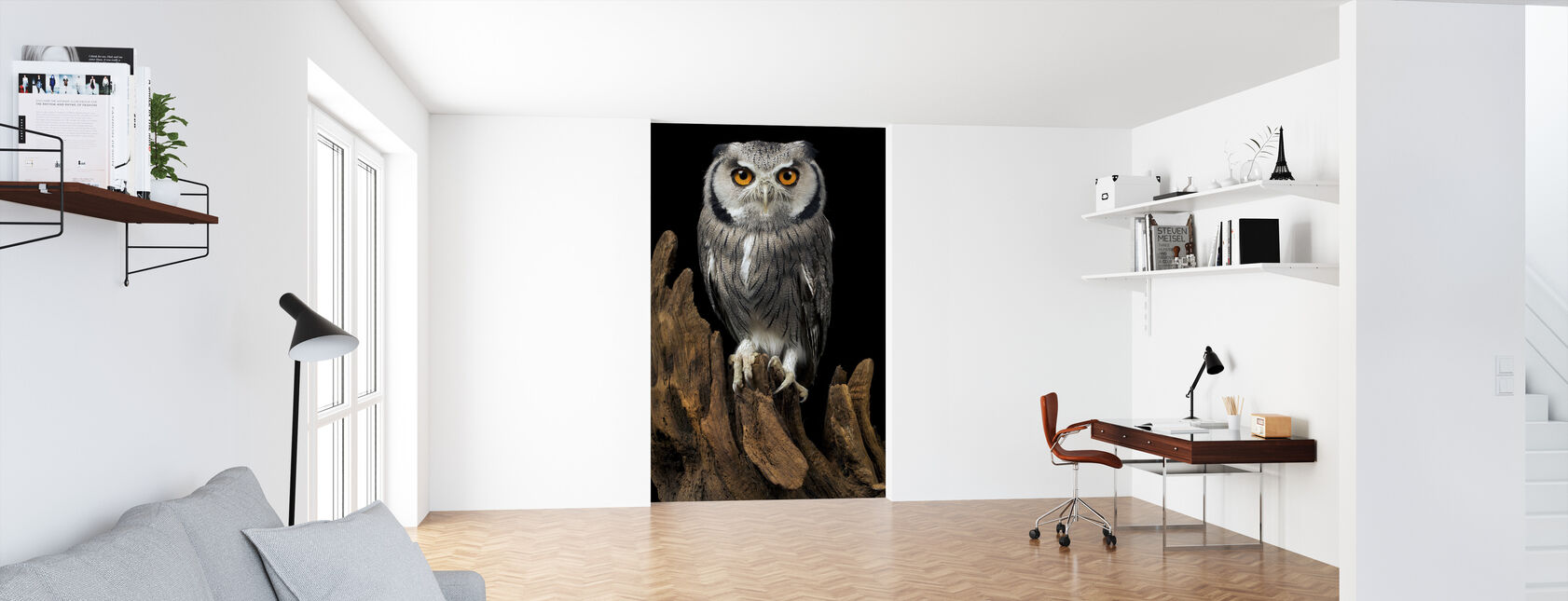 White Faced Owl - Wallpaper - Office