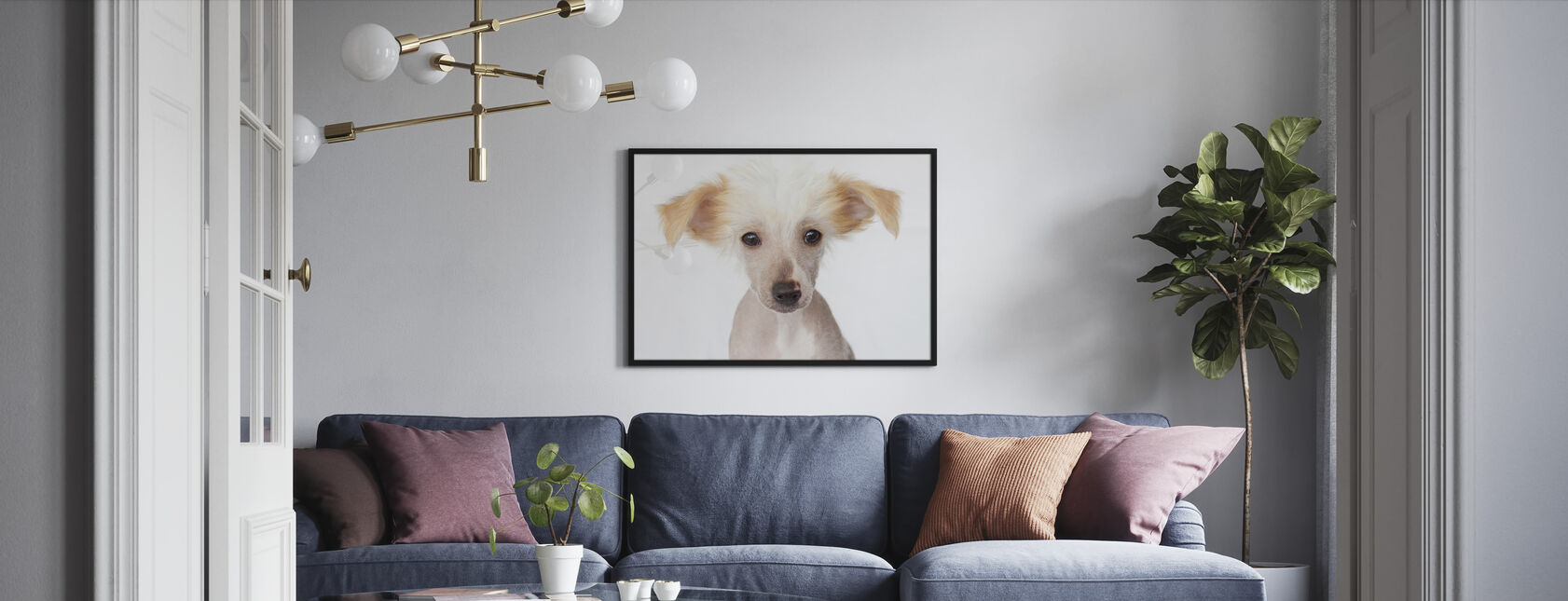 Hairless Chinese Crested Puppy - Framed print - Living Room