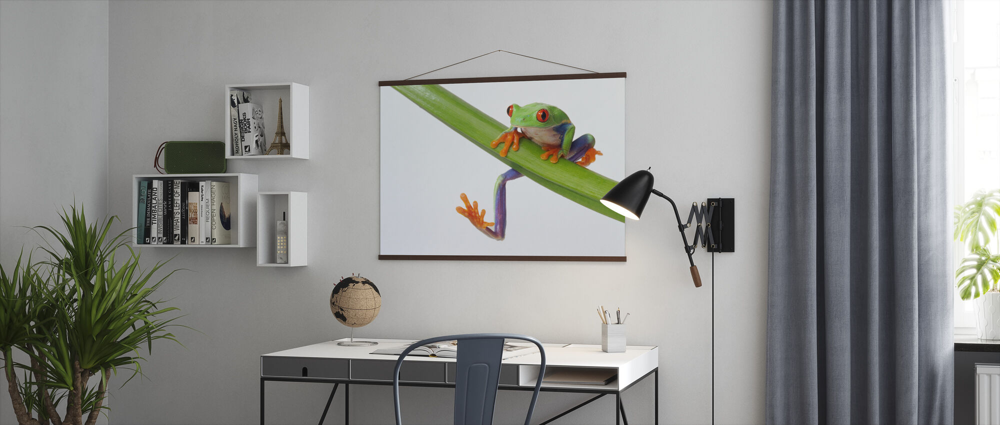 Frog on Branch - Poster - Office