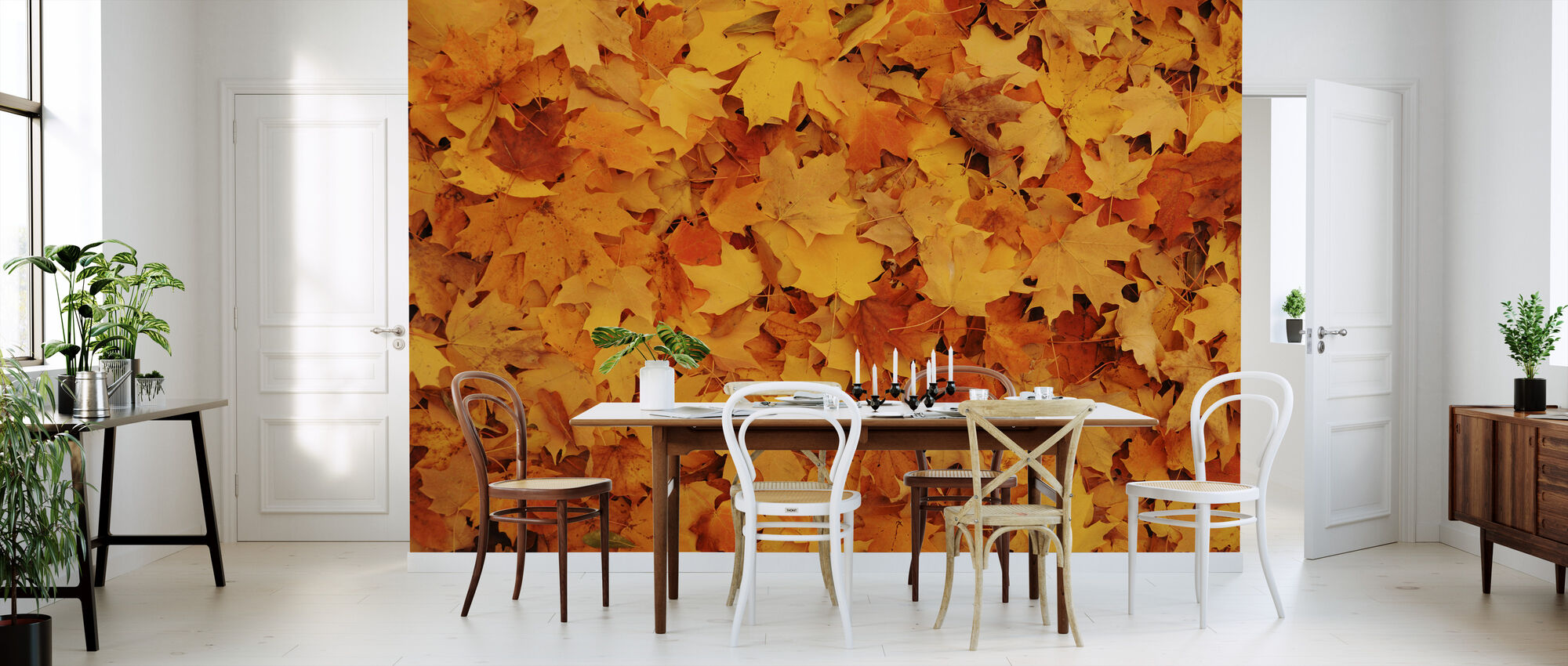 Bed of Autumn Maple Leaves - Wallpaper - Kitchen
