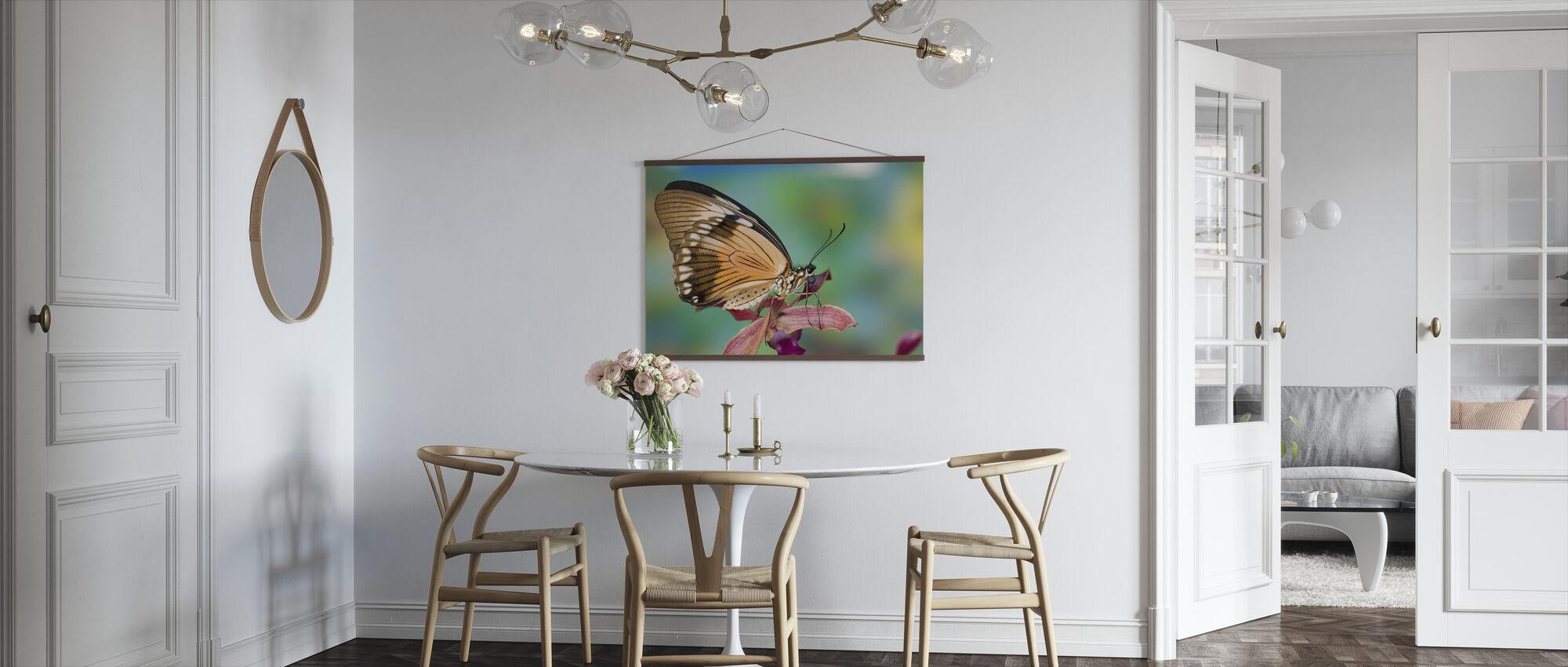 Papilio Dardanus Vlinder op Orchidee - Poster - Keuken