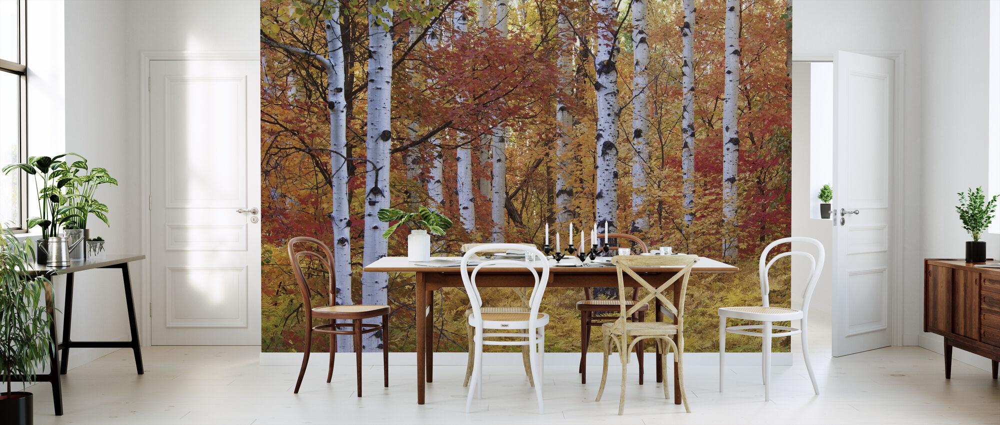 Herfst berken van de Rocky Mountains - Behang - Keuken