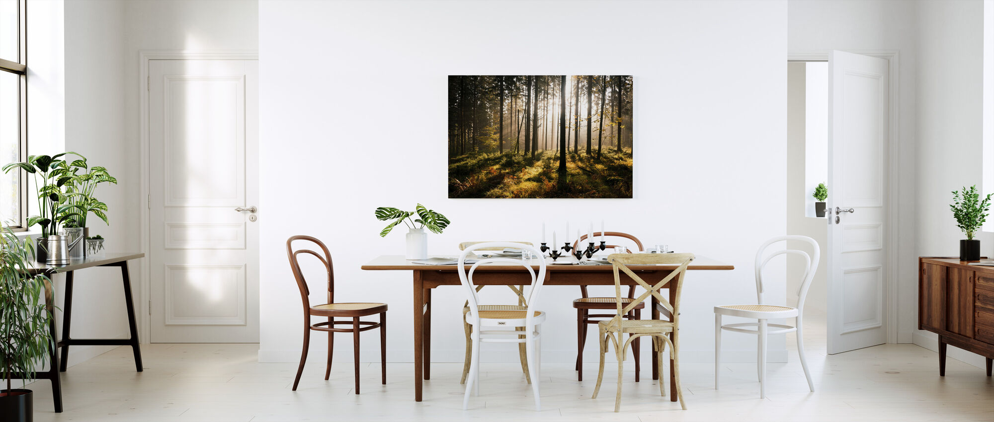 Fall Forest with Sunrays - Canvas print - Kitchen