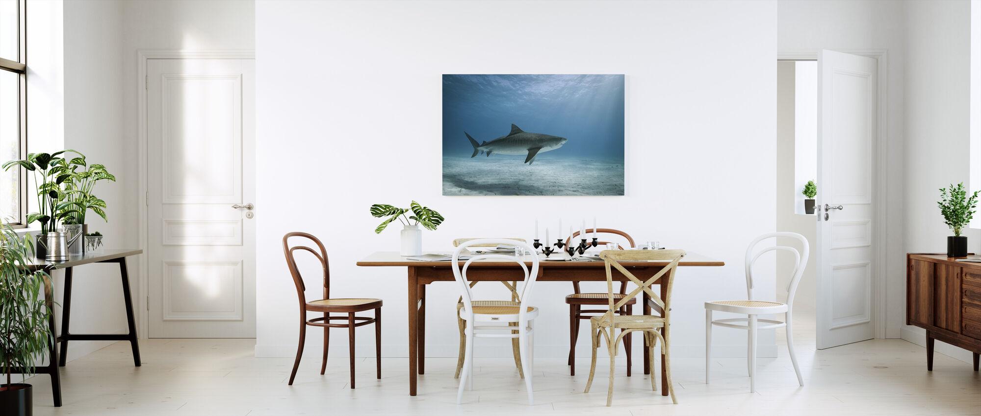 Tijgerhaai - Canvas print - Keuken