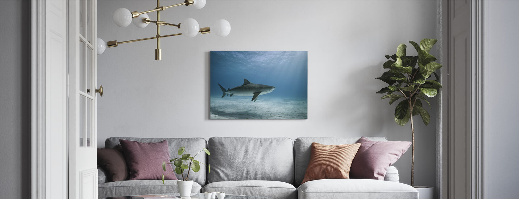 Tiger Shark - Canvas print - Living Room