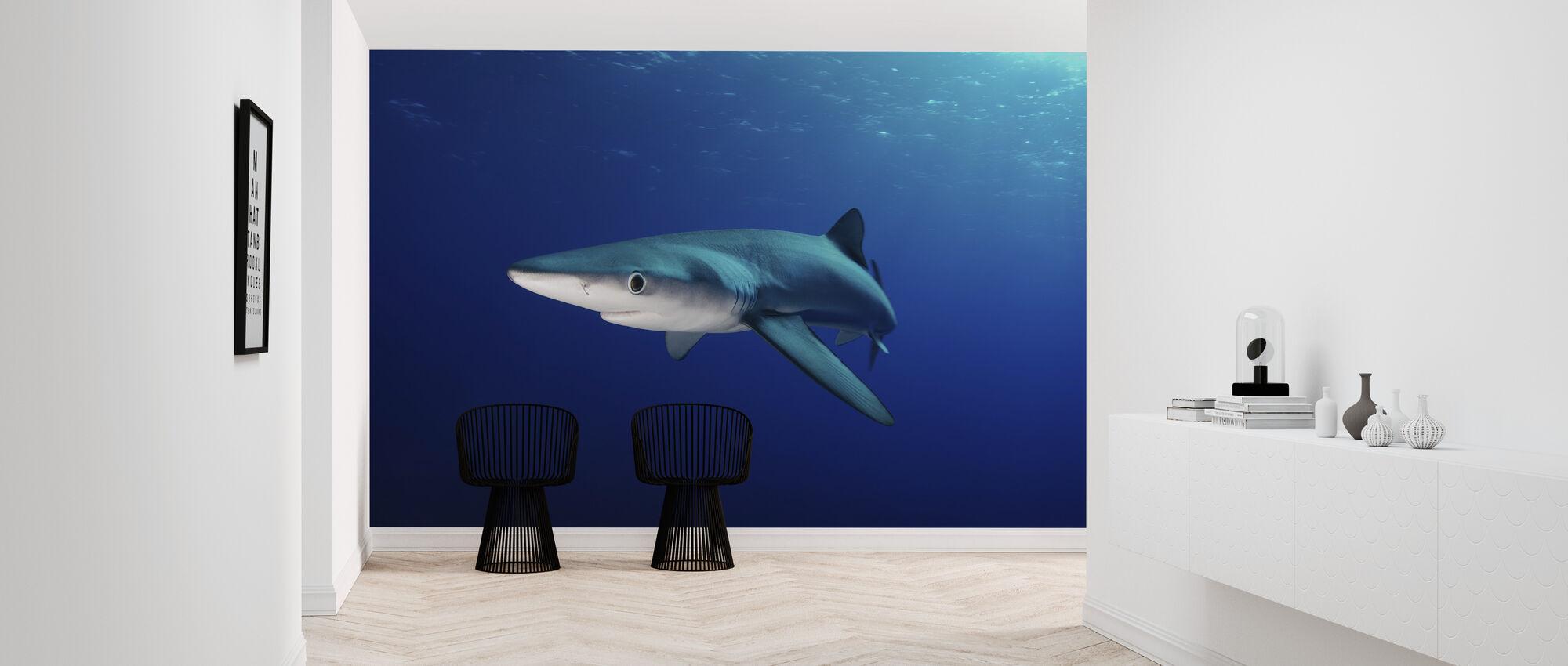 Lone Blue Shark - Wallpaper - Hallway