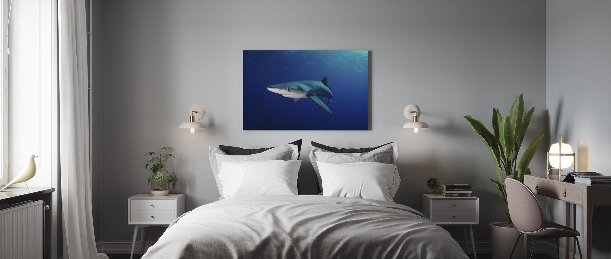 Lone blå haj - Canvastavla - Sovrum