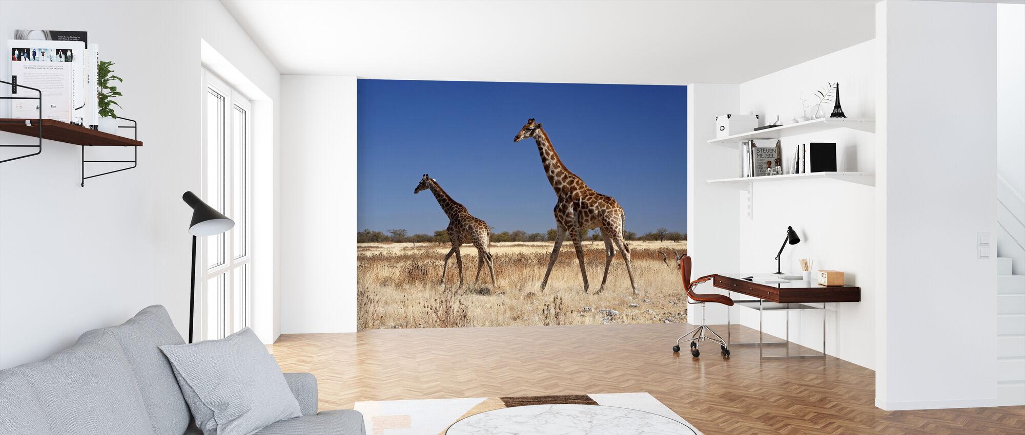 Giraffes at Etosha National Park - Wallpaper - Office