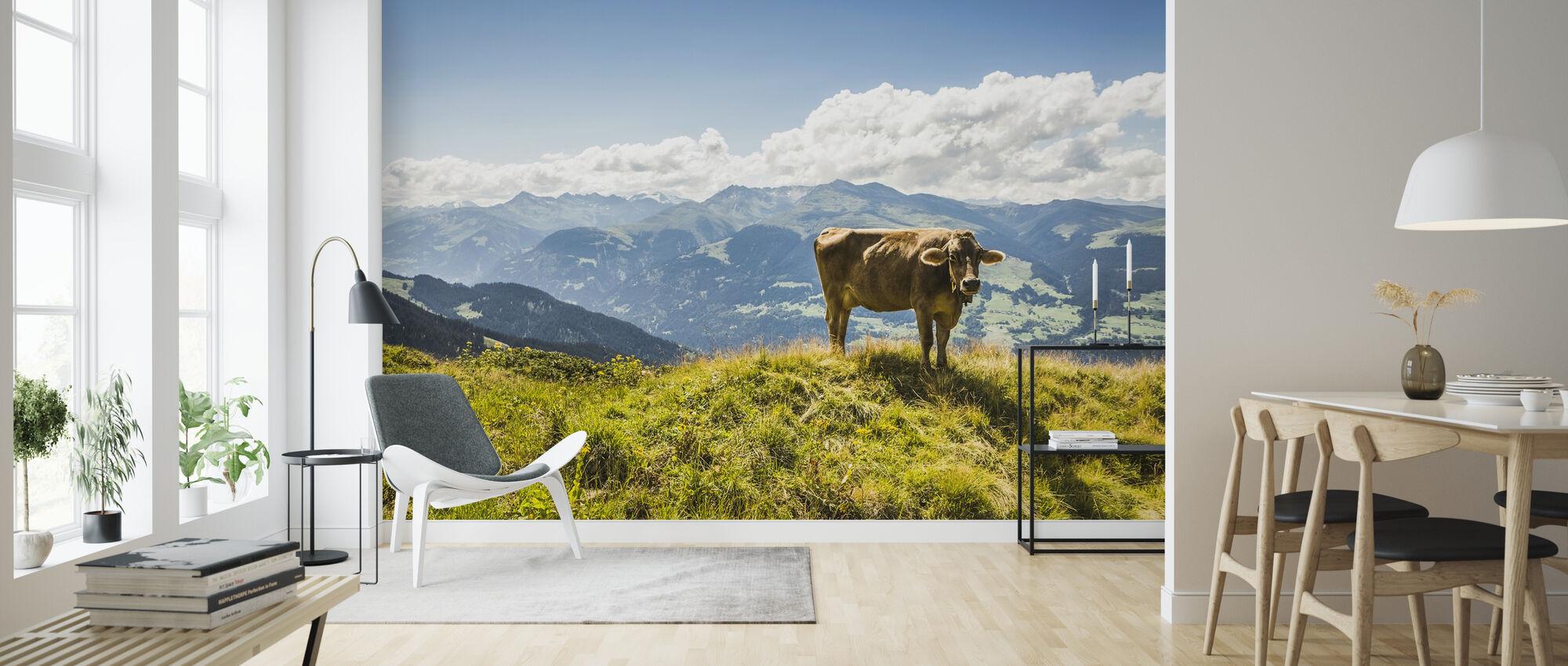 Cow Grazing on Grassy Hillside - Wallpaper - Living Room