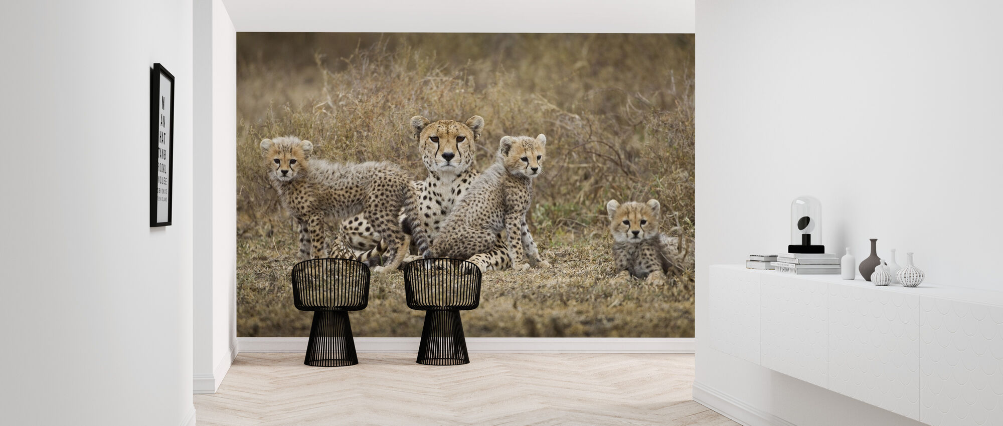 Cheetah Cubs and Mother - Wallpaper - Hallway