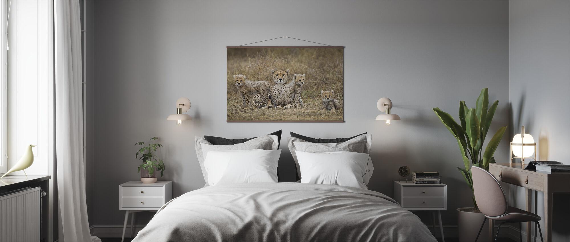 Gepardunger og mor - Plakat - Soverom