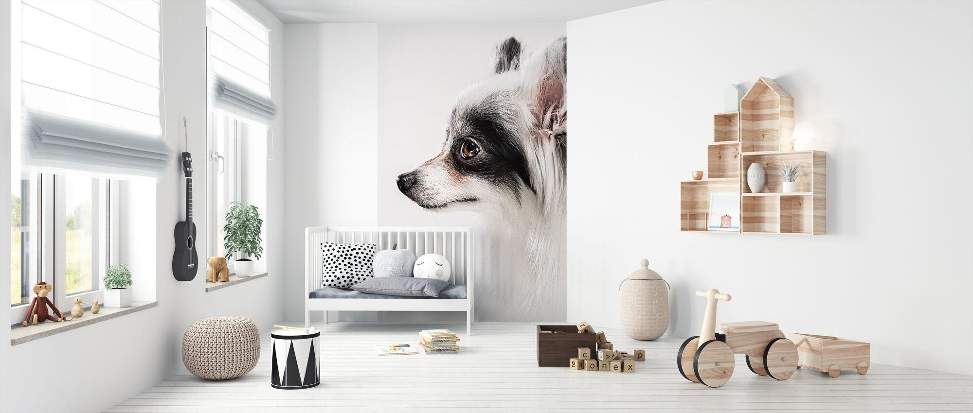 Pomeranian Dog - Wallpaper - Nursery