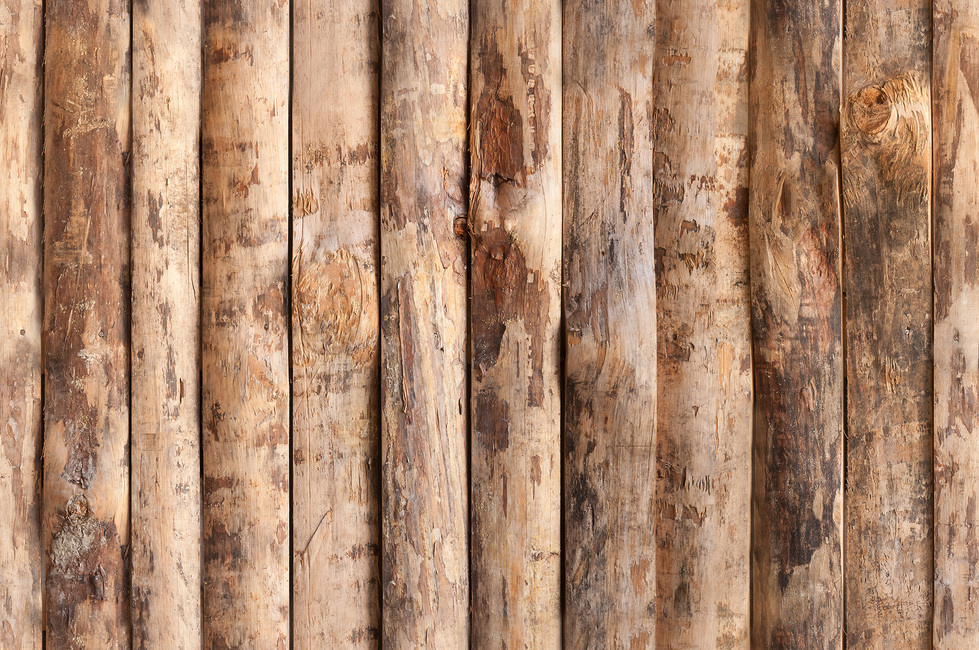 Upright Wooden Wall Fototapeter & Tapeter 100 x 100 cm