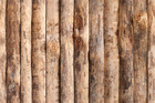 Tapet - Upright Wooden Wall