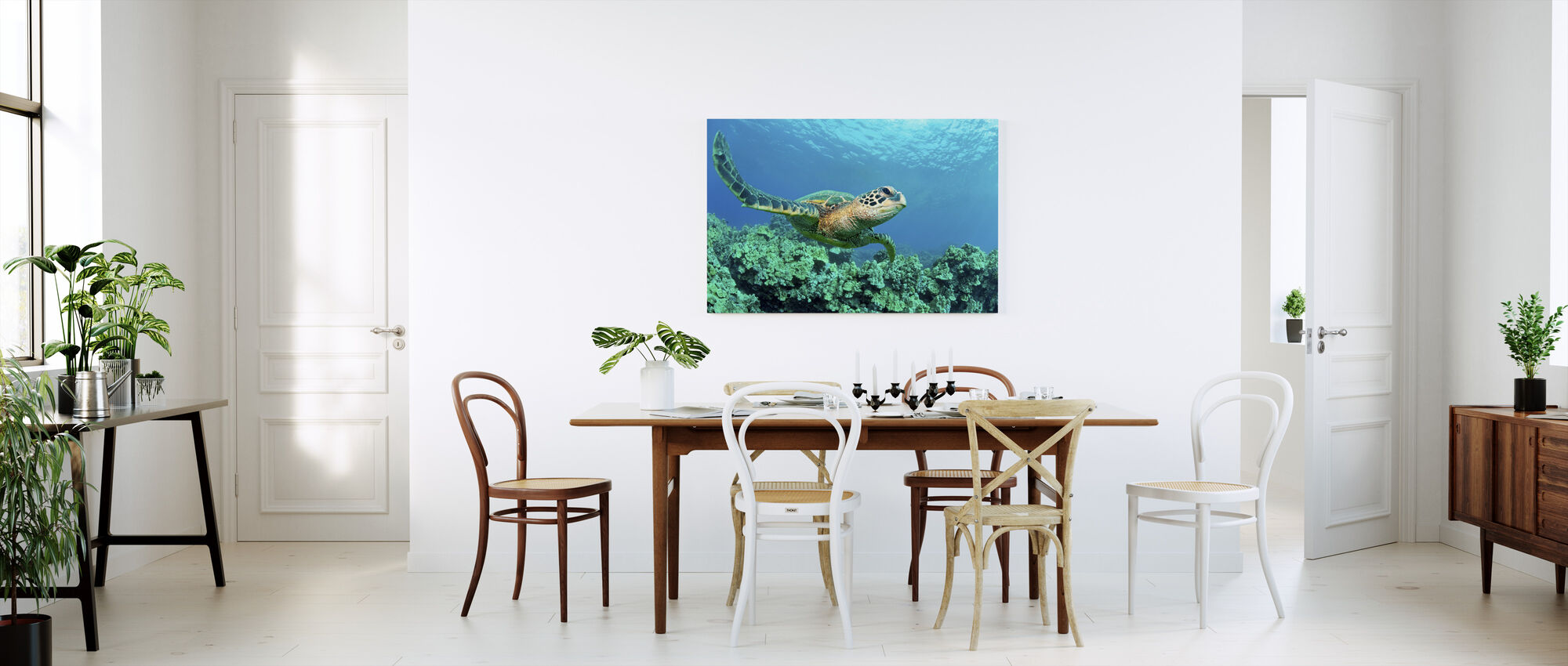 Sea Turtle in Coral - Canvas print - Kitchen