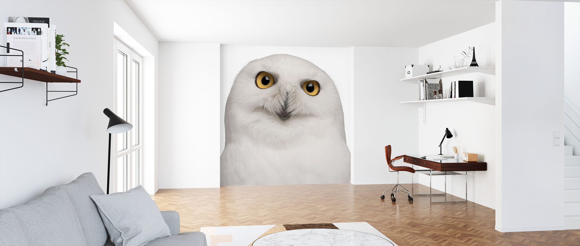 Snowy Owl Decorate With A Wall Mural Photowall