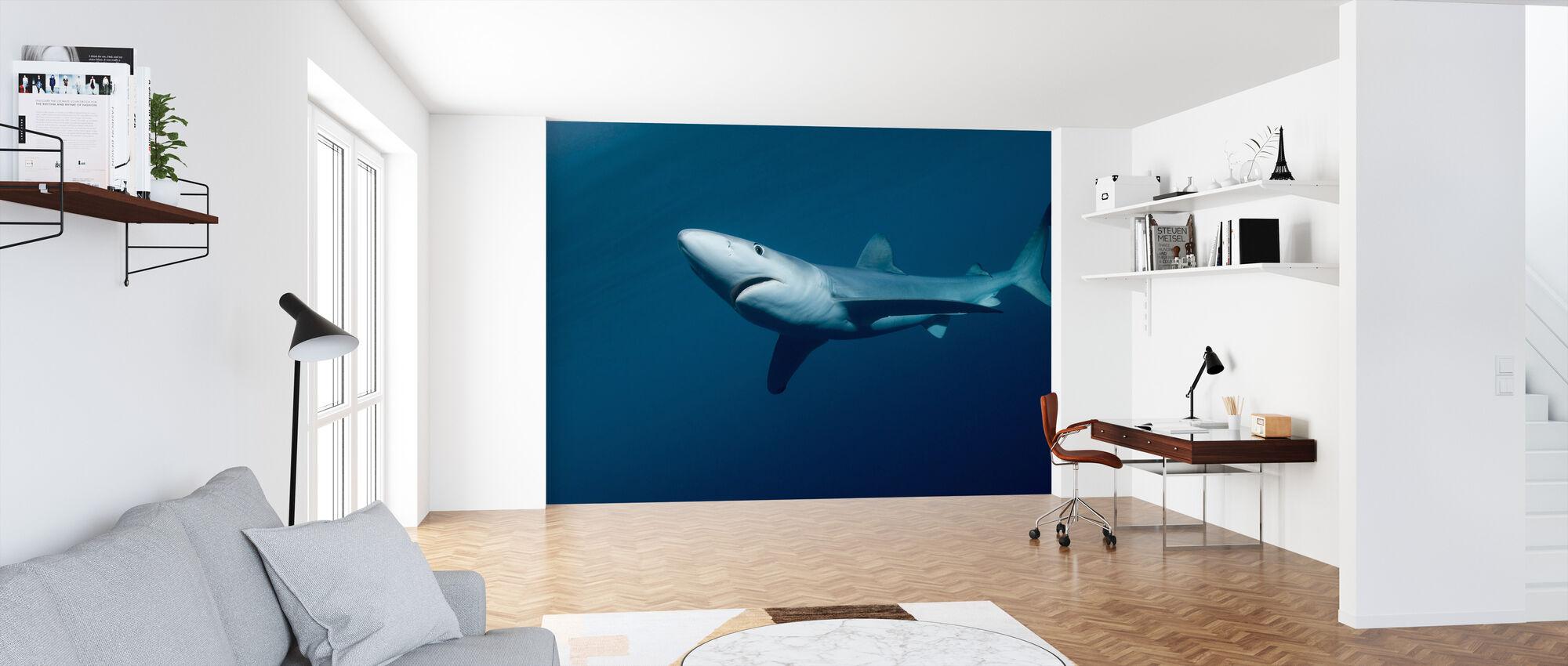 Blauwe haai - Behang - Kantoor