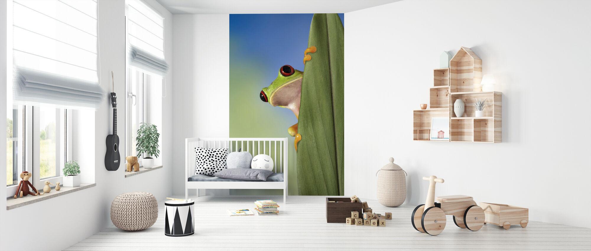 Red Eyed Tree Frog Peeking From Behind a Leaf - Wallpaper - Nursery