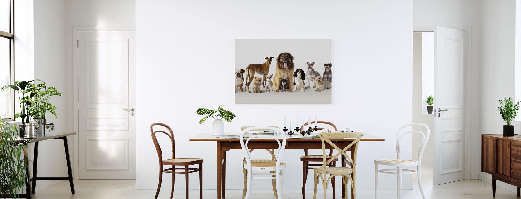 Group Portrait of Dogs - Canvas print - Kitchen