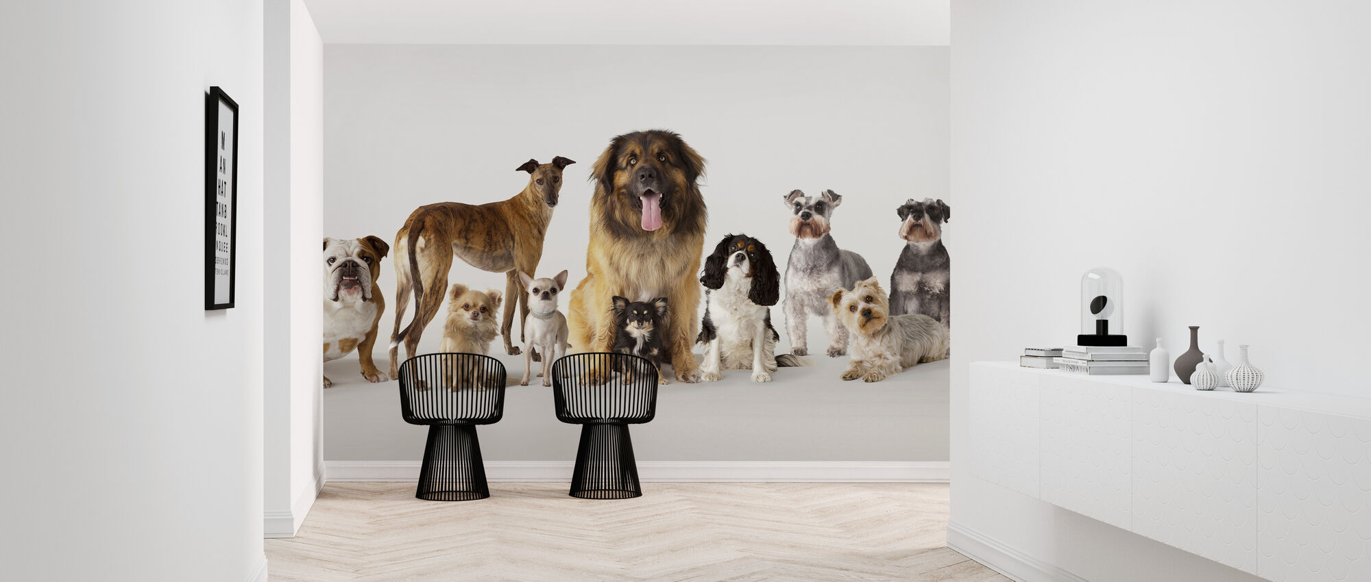 Group Portrait of Dogs - Wallpaper - Hallway