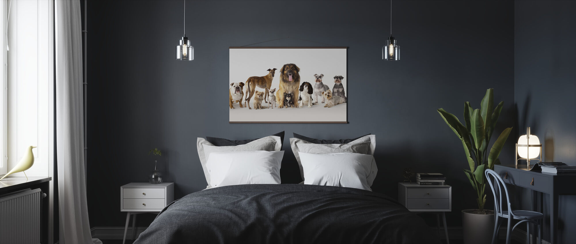 Group Portrait of Dogs - Poster - Bedroom