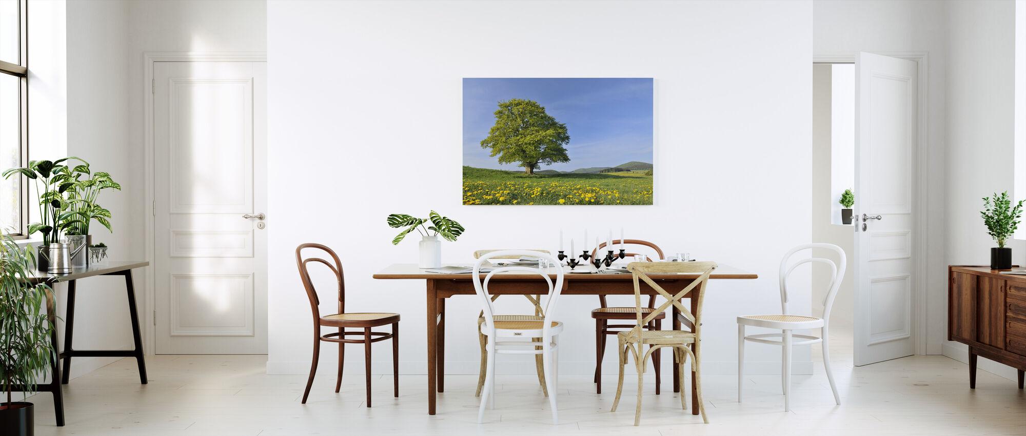 Lone Beech Tree - Canvas print - Kitchen
