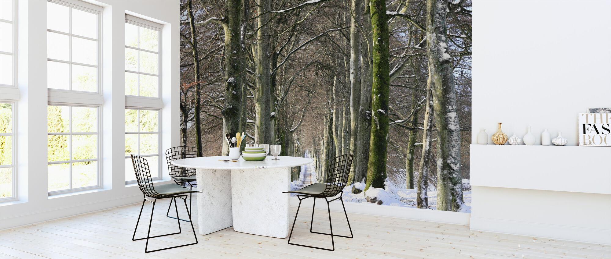 Snowy Tree-foret Avenue - Tapet - Køkken