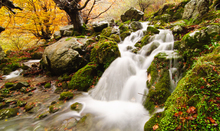 Fototapet - Waterfall of Collados del Ason