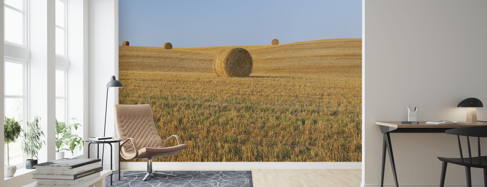 Høstet hvete felt - Tapet - Stue