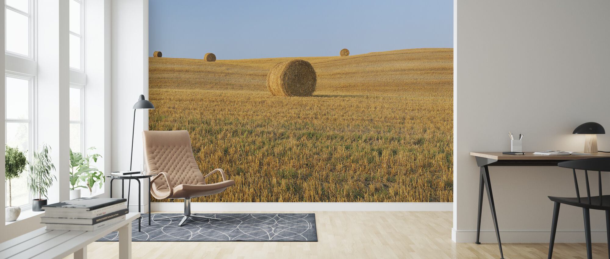 Harvested Wheat Field - Wallpaper - Living Room