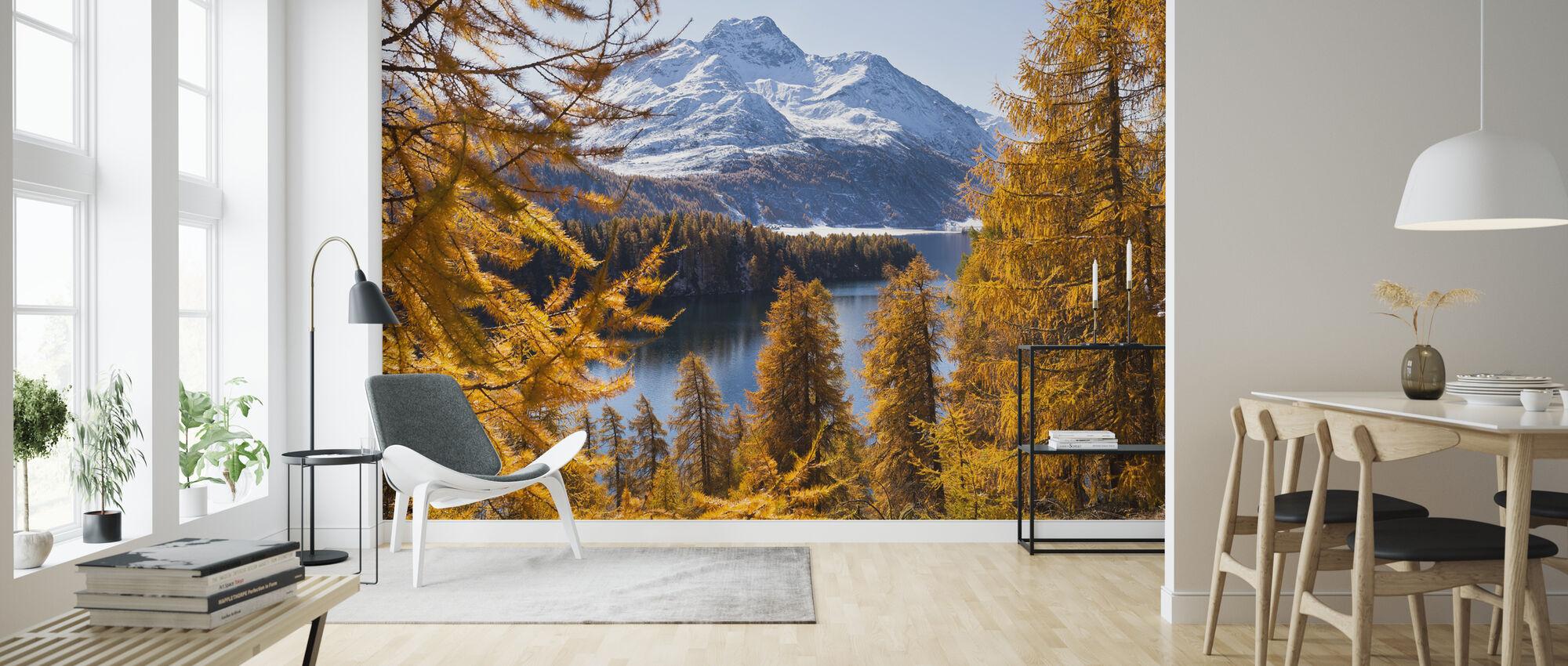 Schweiziske lærketræer - Tapet - Stue